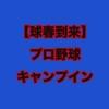 【2019展望】プロ野球キャンプイン