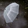 久々にビニール傘を買った罪悪感。