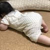 愛娘(生後6ヵ月)が夢中!育児に役立つ、大人しく待てるグッズ3選