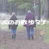 犬のお散歩マナー