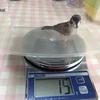 久しぶりの体重測定