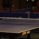 2017アジア卓球選手権でたくさん出てきた中国語