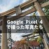 Google Pixel 4で撮った写真をひたすら貼る記事〜ポートレートモード、夜景モード