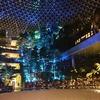【SFC修行2020】シンガポールチャンギ国際空港での乗り継ぎ待ち チャンギはやっぱりすごい空港だった