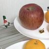 りんごは輪切りでおいしく栄養を無駄にせず食べる!
