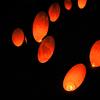 湘南です17 龍口寺「竹灯籠」 光の玉は飛んだのか?