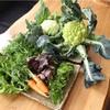 素晴らしい無農薬のお野菜着きました