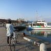 桜サイクリングin静岡市 その2