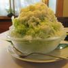 【奈良かき氷】 お茶処 ときわ さん 2021年8月 (冷たいかき氷)