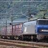 通達249 「 機械鯨は鉄路を泳ぐ  EF200代走の貨物列車を狙う 」