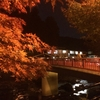 【雑記】:香嵐渓に行ってきました。駐車場や見ごろの時期などデートの参考になれば。