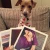 マイブックライフで愛犬写真をフォトツリーにしたよ
