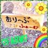 おりーぶ武庫之荘教室 専用農園  🍅おりーぶファームで農作業体験🥕 http://www.olive-jp.co