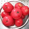 トマトジャム作り&ウォーキング