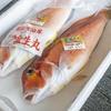 2020年6月9日 小浜漁港 お魚情報