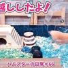 【ハムスター 動画】ハムスターのお家を水槽にお引越ししたら気に入ってくれたみたい!#66 DIY HAMSTER