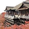 清水寺の紅葉を観に行く②観光32R...過去20161130京都