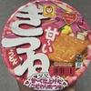 東洋水産 マルちゃん 甘ーいきつねうどん  食べてみました