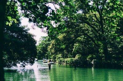 【初夏の真夏日フォトウォーク】吉祥寺 井の頭公園で独り散歩してきました