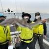 緊急SOS!池の水ぜんぶ抜く大作戦 東京湾でサメを釣る!田村淳(ロンドンブーツ1号2号)、田中直樹