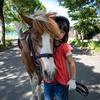 小貝川ポニー牧場で乗馬レッスンを受けてきた。