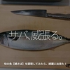 747食目「サバ、威張る。」旬の魚【鯖さば】を調理してみたら、綺麗に出来た!