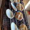 ランチツーで行った「海食堂 九十九里倉庫」で焼はまぐりと刺身定食を頂いた! #グルメ #食べ歩き #ランチツー #ツーリング  #浜焼き