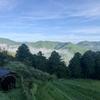 霧の里 「高原」