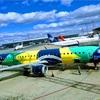 2018年ブラジルツアーの航空券予約