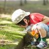 狛江市で認可保育園に4月入園するためにチェックしておきたい6つのステップ!待機児童対策や倍率解説 平成30年度版