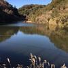 『瓢の池』掛川野池群バス釣り完全攻略マップ