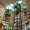 【HYATT】夏の家族ハワイ旅行(8)〜ハイアットリージェンシー マウイ リゾート アンド スパ ラハイナオーシャンスイート