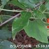 松山千春の「神対応」