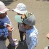 3歳児の探し物