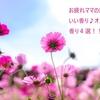 【育児】お疲れママの癒しにはいい香り♪オススメの香り4選!!!