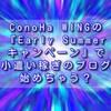 ConoHa WINGの『Early Summerキャンペーン』で小遣い稼ぎブログ始めちゃう?