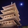 ◆今仏教から受けとれるフォース(自然、宇宙の調和の力)その①
