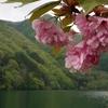 薗原湖Kayak 〜 吹割渓谷