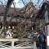 京都で終い天神