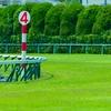 【弥生賞 2020予想】追い切り・ラップ適性・レース傾向考察 & 各馬評価まとめ / 低気圧を吸い寄せろ!
