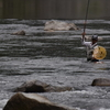 鮎の試し釣りについて