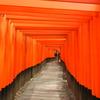 写真を撮りにいかない10月の京都旅行は、初めて京都に行く人に最適の季節。5つのポイントで紹介