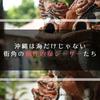 【E-PL2】沖縄は海だけじゃない、街角の個性的なシーサーたち