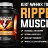 Vigorous Muscle Maximizer - Gain Muscle The Safe Way