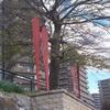 福岡市(4)  福岡(6)