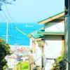 真っ青な海、色とりどりの屋根、したたる緑。色彩豊かな三重県鳥羽市の神島へ。【その2】