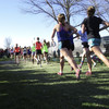 諸君、私は走ることが好きだ。私はマラソンが好きだ。私はランニングが大好きだ。