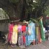 巨大樹の根元の衣装