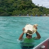 サモアのリゾート島 Namua island