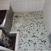 浴室タイル床 補修